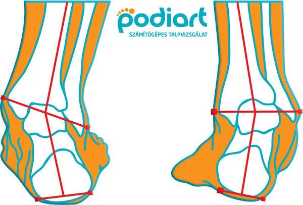 A láb mozgása